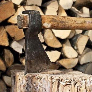 фото: какие дрова лучше для бани