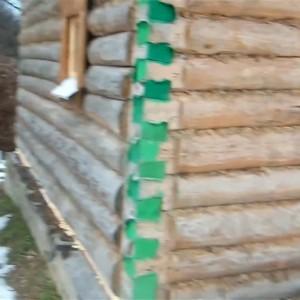 фото: коробка бани из бревна