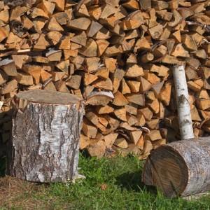 фото: заготовка дров