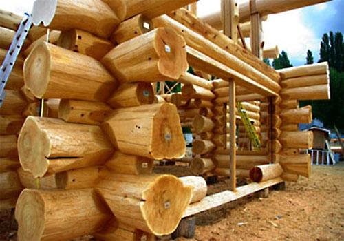 фото: из какого дерева строить баню