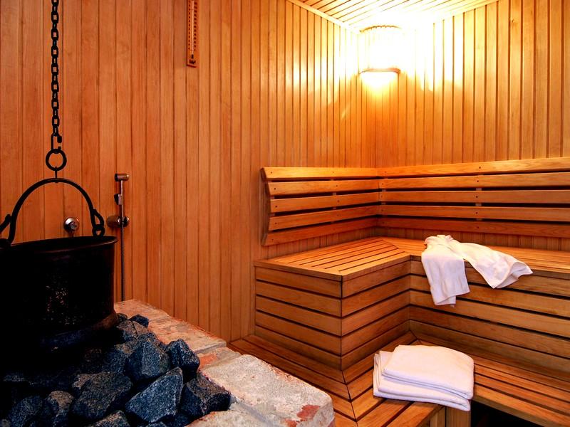 Отделочные материалы, используемые для интерьера бани внутри