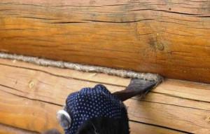 фото: конопатка сруба бани