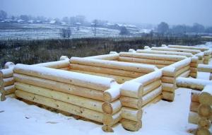 фото: баня из бревна зимой