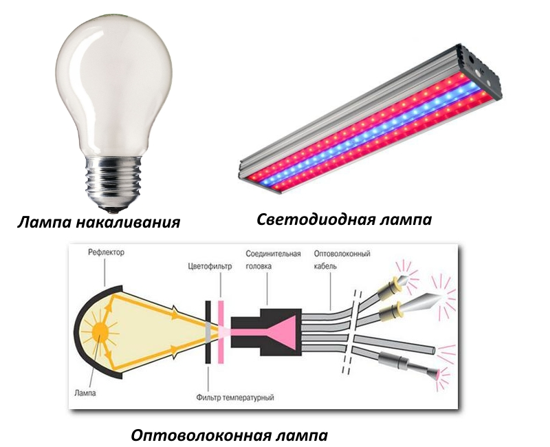 Виды ламп для бани